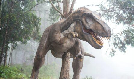 Tyranosaurus jako hlavní představitel skupiny zvané dinosauři.