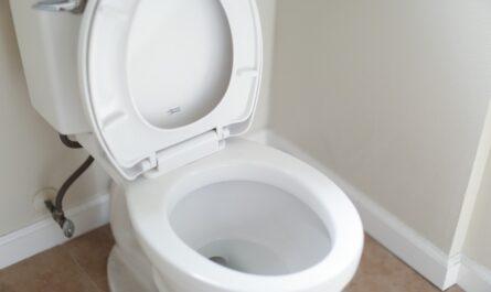 Zácpa je nepříjemností, kterou vyřešíte na toaletě.